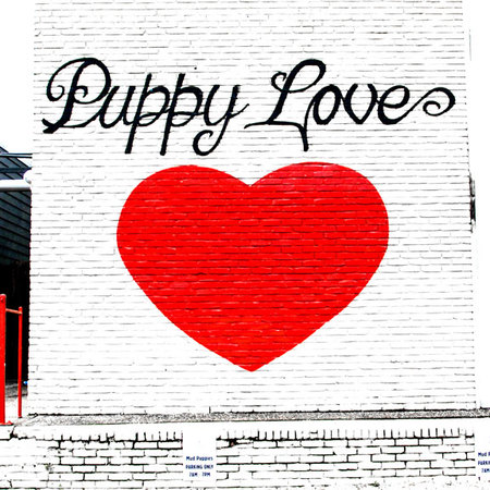 Puppy Love Mural Austin, Texas